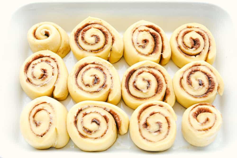 Raised cinnamon rolls ready to bake.