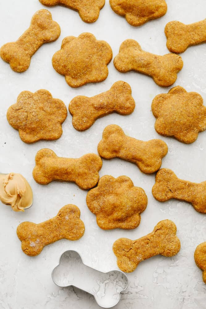 Various dog treats and a bone-shaped cookie cutter.